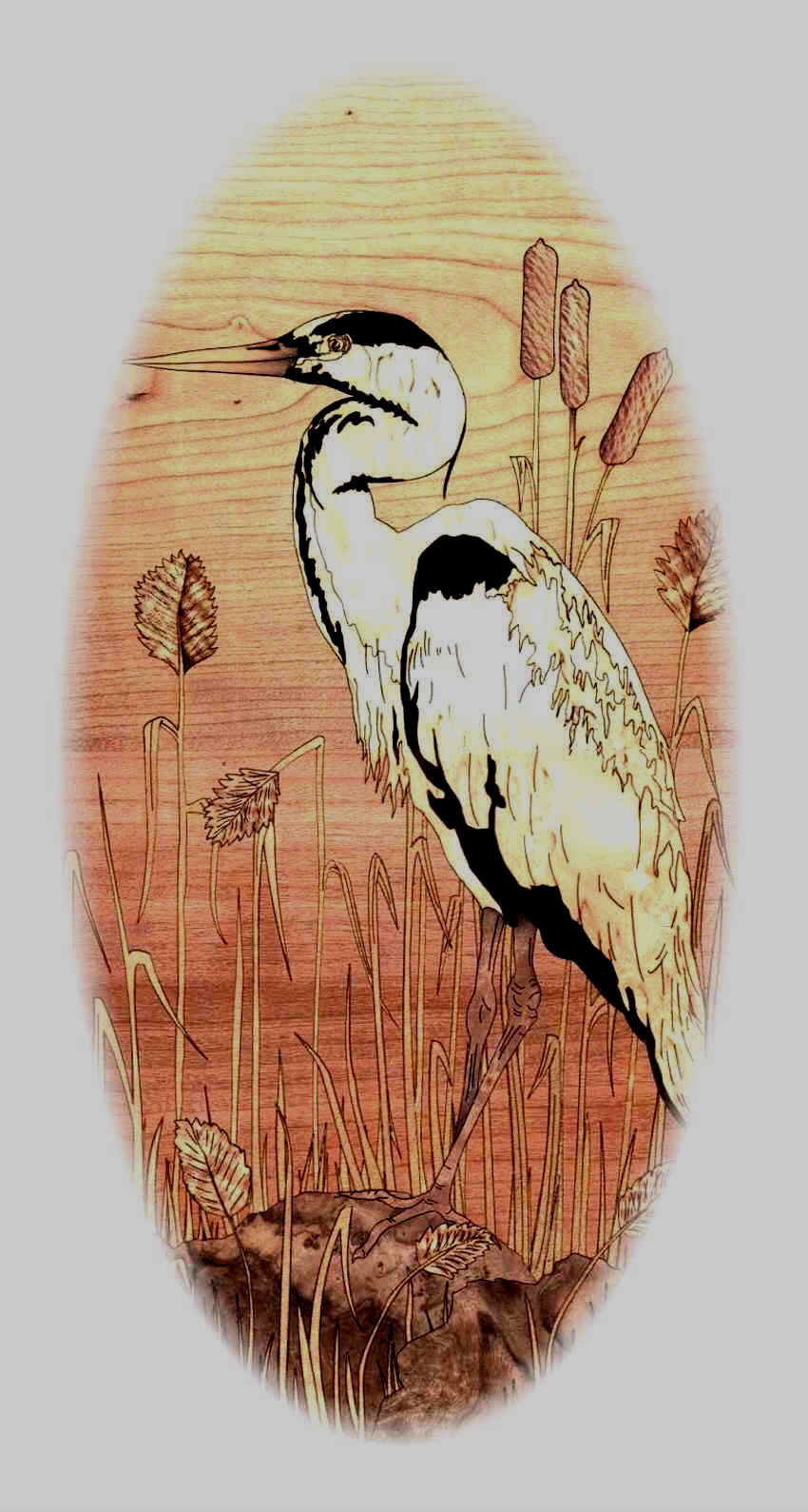 Heron for marquetry clockcase for Graham Bemment