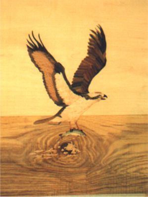 Fretsawn  Osprey marquetry panel for Doug Mooberry